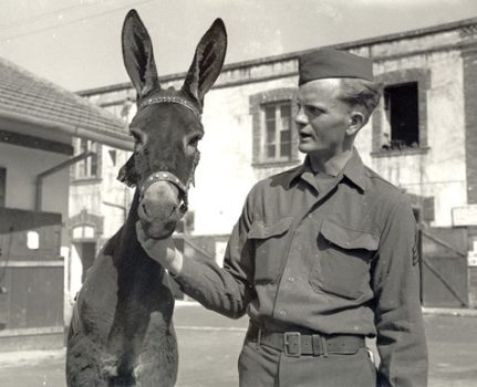 Edda the donkey and GI friend in Italy, 1944
