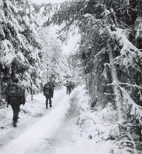 Soldiers on a forest road