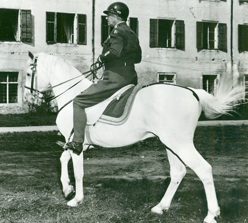 Patton mounted on the horse Favory Africa in Austria