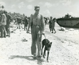 Corporal and Doberman